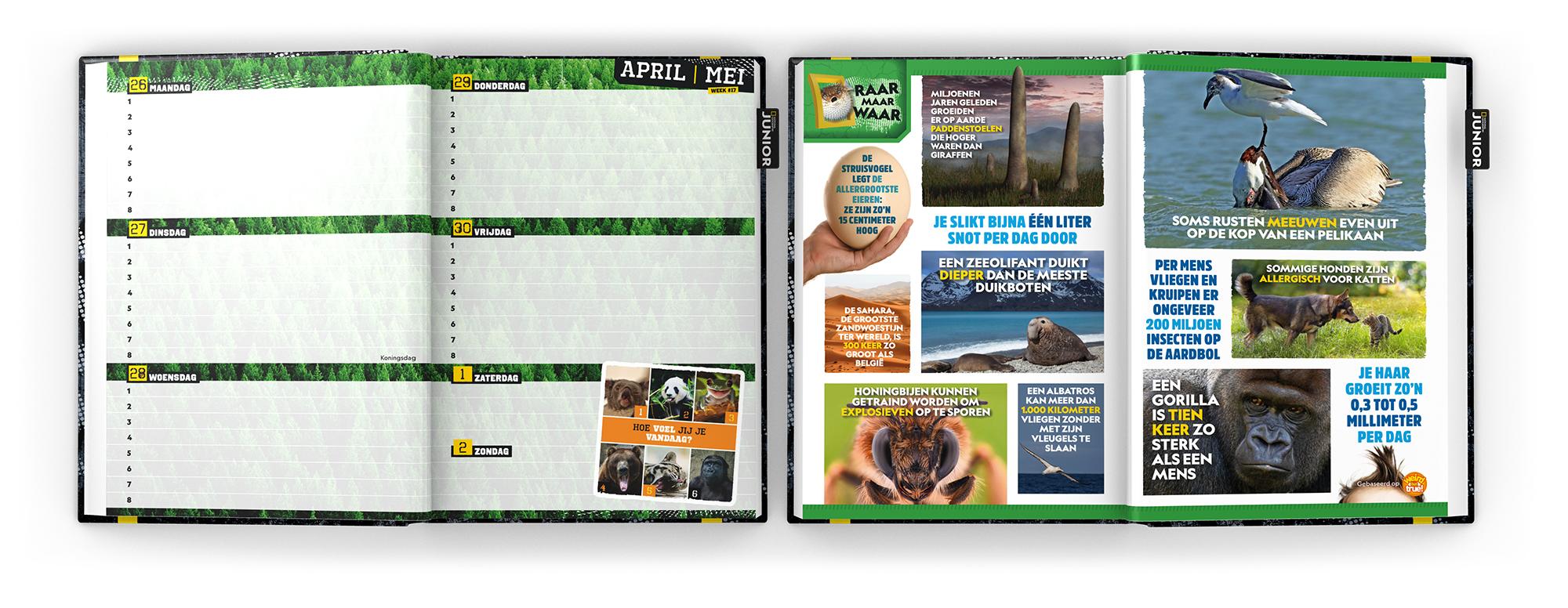 National Geographic Junior Agenda